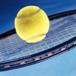 Tenis 2010