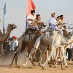 Un espectáculo que reúne a miles de turistas