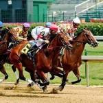 Apuesta a las carreras de caballos